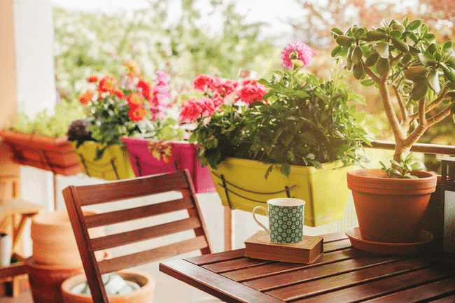 Gardening at Rental Properties: Your Ultimate Guide – Keyrenter St Charles